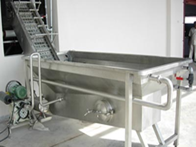 Fruit Washer with Elevator